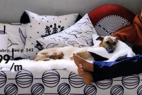 Ikea Dog