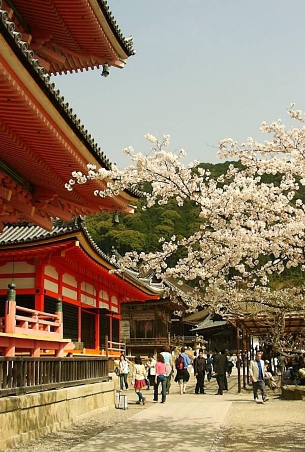 kiyomizu-temple1.jpg