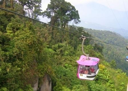 malaysia_rain_forest.jpg