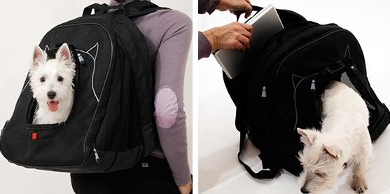 Pet-Laptop-Backpack 1
